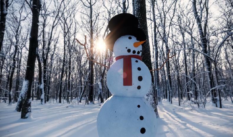 Revit Snowman Enscape Render